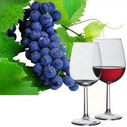 Uhudler-Wein